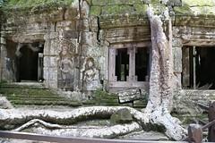 Angkor_Ta Prohm_2014_16