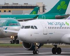 Aer Lingus                         Airbus A320                             EI-DVL (Flame1958) Tags: aerlingus aerlingusa320 aerlingusnewlivery aerlingusrebranding airbusa320 a320 320 eidvl dub eidw dublinairport 110319 0319 2019 1145