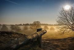 Wilder Westen inclusive (Der Hamlet) Tags: haltern nrw halternerheide frühnebel heidelandschaft sonnenaufgang germany ruhrgebiet