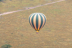 Light 'Er Up (Jill Clardy) Tags: africa tanzania vantagetravel safari mararegion tz 201902239l8a0478 serengeti national park balloon hot air ride dawn sunrise morning plain savanna gas flame rising
