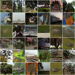 mayadevi2 (belight7) Tags: maya devi site buddha lumbini collage mosaic nepal
