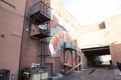 trumbell-6970 (FarFlungTravels) Tags: county northeast alley alleyway davegrohl ohio travel trumbell warren