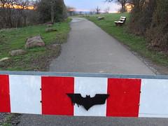 Weiter nur für Fledermäuse / Bats only (thobern1) Tags: birkenfeld erlach enzkreis badenwürttemberg germany