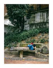 Jardim da Estrela, Lisboa (Sr. Cordeiro) Tags: jardimdaestrela jardimguerrajunqueiro lisboa lisbon portugal jardim park estrela alone só solitário panasonic lumix gx80 gx85 14140mm