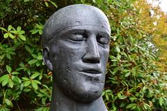 Male Bust (Bri_J) Tags: chatsworthhousegardens bakewell derbyshire uk chatsworthhouse gardens chatsworth nikon d7500 bust