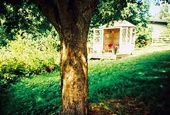 Tree hut (Stephen Dowling) Tags: 35mm film somerset lomography lomolca russiancamera sovietcamera kodakelitechrome100 xpro crossprocessed