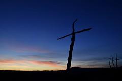 #Bosc de les Creus#Òdena#catalunya#fotografsateneu# (emosquera48) Tags: bosc fotografsateneu òdena catalunya