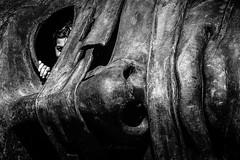Face to Face (agnieszkawojcik) Tags: bw bnw blancetnoir blackandwhite blancoynegro białoczarne biancoenero blanconegro blackwhite mono monotone monochrome monochromatic people woman eye sculpture streetart face head kraków polska poland cracow canon canon350d travel