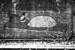 wrong side of the tracks (chipsmitmayo) Tags: nikon f100 nikkor 50mm f18 kodak tmax 3200 film analog schwarzweiss blackandwhite labor münster westfalen bär balu graffiti bahnhof schienen tracks mauer wall piece chillin time killin winter snow schnee
