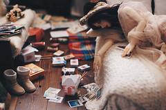 Illness III (AzureFantoccini) Tags: bjd abjd doll dollhouse zaoll dollmore luv balljointeddoll room dollroom miniature diorama bedroom