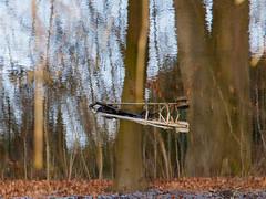 Upside Down; Verkehrte Welt (16:10)