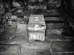 20190224-0111-Edit (www.cjo.info) Tags: bw dryburgh dryburghabbey europe europeanunion historicscotland m43 m43mount microfourthirds nikcollection olympus olympusmzuikodigital25mmf18 olympuspenf scotland scottishborders silverefexpro silverefexpro2 unitedkingdom westerneurope abbey architecture blackwhite blackandwhite carving cemetery digital face gothic gravegraveyard monochrome religion religiousbuilding ruins stone stonework