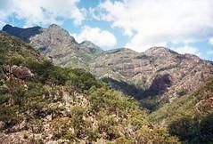 Mt Barney from near Lower Portals, 1993 (NettyA) Tags: 1993 australia mtbarney mtbarneycreek mtbarneynationalpark qld queensland bushwalking scannedprint scenicrim