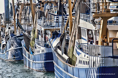 Fishing boats (Jan Kranendonk) Tags: ships scheveningen holland netherlands dutch harbor port fishing trawlers industrial water europe modern blue warehouse quay masts nets close tele boats