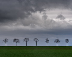 Trees on a Line (in explore) (exilepixel) Tags: bäume trees landscape nature germany natur clouds wetterau wolken field