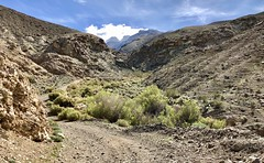 Panamint / Death Valley Trip 3-22-2019 (Doug Goodenough) Tags: bicycle bike pedals spokes canyon trek powerfly 97 pfly pleasnt ballarat ghost town rocky views mountain mountains climb steep mines desert flat drg531 drg53119 drg53119p drg53119ppanamint