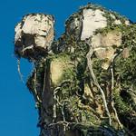 Pandora - Hanging Rock thumbnail