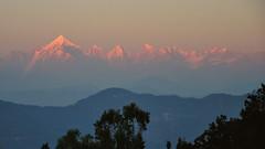 Dayend over Panchachuli (draskd) Tags: sunset panchachuli uttarakhand chaukori mountain mountainrange himalayas kumayunhimalayas