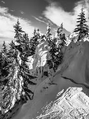 bavarian winter dream - a traum (genelabo) Tags: schönberg fleck lenggries bayern bavaria ski snowboard snow schnee skitour sun alps berge 1621 m voralpen isartal genelabo sky himmel snowfield view black white schwarz weiss bw sw deutschland germany winter dream