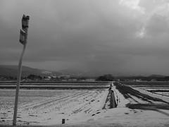 a cloudy afternoon (murozo) Tags: cloud rice field traffic sign mountain mtchokai snow winter nikaho akita japan 雲 雪 冬 秋田 田圃 山 にかほ 鳥海山 日本 標識 畦道