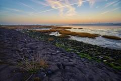 Viane (Photodoos) Tags: lowtide landscape viane slikken schouwenduiveland sunrise wetlands zeelandf zeeland netherlands dike irix canonnl