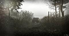 78' (Loegan Magic) Tags: secondlife vintage car automobile landscape sky blackandwhite monochrome
