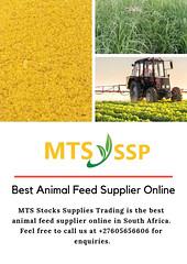 Almond Nuts Supplier (mtsstocksuppliestradingonline) Tags: almond nuts supplier granular corn gluten meal suppliers arabica green coffee