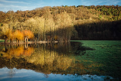 Autumn Vibes in Spring :) (freyavev) Tags: lake water enz badenwürttemberg germany deutschland mikasniftyfifty canon canon700d outdoor nature biking reflections landscape colorful unterriexingen vsco