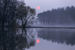 IMG_0704 (geraldtourniaire) Tags: canon eos6d ef 70200l 70200mm franken natur nature nebel baum mittelfranken 6d landschaft licht l