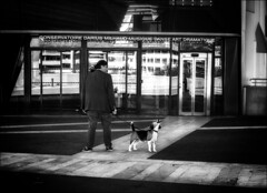 Le chien qui n'aimait pas la musique... /The dog who did'nt like music... (vedebe) Tags: ville city rue street urbain urban animaux animal chiens musique architecture humain human monochrome noiretblanc netb nb bw