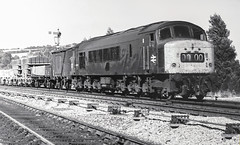 46038 at Totnes (robmcrorie) Tags: 46038 1976 1970s fp4 peak presflo cement totes freight ilford monochrome totnes