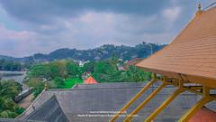 Golden Canopy of the Sri Dalada Maligawa | රන් වියන (Sri Dalada Maligawa Kandy) Tags: gold goldroof golden canopy sridaladamaligawa