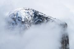 El Capitan Summit (Kurt Lawson) Tags: california capitan cliff elcapitan granite ledge mountain mountains national park sierranevada sierras snow summit trees wall winter yosemite yosemitenp