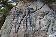 (i threw a guitar at him.) Tags: alaska outside outdoors klondike national park hidden secret location us graffiti cove writing rock adventure mystery message wall