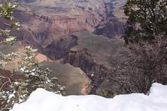 IMG_8618 (patterpix) Tags: grandcanyon arizona snow trees winter canyon storm
