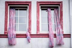 Die Gardinen sollten auf der anderen Seite sein --- The curtains should be on the other side (der Sekretär) Tags: anstrich cuxhaven detail deutschland eigenschaften farbe fassade fenster gardine gardinen germany glas holz lack lackierung lowersaxony niedersachsen putz vorhang vorhänge abblättern abgeblättert alt closeup curtain curtains degenerated downandout facade façade front glass heruntergekommen lacquer marode old peeloff peeledoff rendering scruffy shabby vergammelt window windows wood