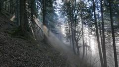 Sonnenlicht Nebel (Aah-Yeah) Tags: sonnenlicht nebel fog mist sonne sunlight schnappenberg wald forest achental chiemgau bayern