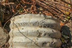 Newd, Dare (NJphotograffer) Tags: graffiti graff pennsylvania pa newd dare