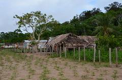 Caucaia - Eirunepé (Cap Rech) Tags: eirunepé riojuruá caucaia amazonas amazônia
