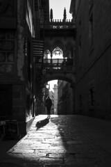 """miré las cosas, nada más"" Pessoa (Herminio.) Tags: barcelona gothic neighborhood ciutatvella gothicquarter backlight woman young bridge arch gangway latticework bishop 巴塞罗那,哥特式,哥特式,邻里,""ciutat vella"",""哥特区"",背光,女人,年轻,桥,拱,舷梯,格子,主教 gotik nachbarschaft gotischesviertel gegenlicht frau junge brücke bogen gitterwerk bischof gótico barrio barriogótico contraluz mujer jóven puente arco pasarela celosía obispo barcelone gothique quartier quartiergothique contrejour femme jeune pont arc passerelle treillis évêque барселона готика окрестности готическийквартал подсветка женщина молодая мост арка трап решетчатаяработа епископ"