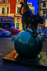 urvanity (_tonidelong) Tags: urvanity 2019 madrid arco pop art streetart sculpture escultura pintura centro urban urbanart spain españa street callejero arte artecallejero gato cat painting