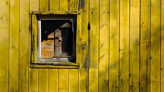 caboose (jtr27) Tags: dscf5598 jtr27 fuji fujifilm xt20 fujinon xf 50mm f2 f20 rwr wr yellow caboose train railroad car maine sooc