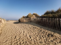 Beach walks on Sunday's with sand in our shoes (Mellisapix) Tags: path pathway coastal coast southeast outdoors walkers sanddunes grasses fence footprints sand sandy ocean seaside beach