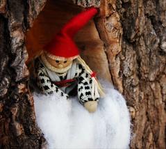 IMG_0112 (www.ilkkajukarainen.fi) Tags: tonttu talvi puutarha helsinki winter gaden joulu christmas elf gnome tomten finland finlande eu europa scandinavia visit travel travelling happy life