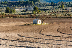 IMG_2039 (jaro-es) Tags: landschaft landscape nature natura natur naturewatcher naturemaster naturesfinest verlassen vergessen acker field