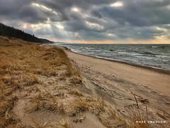 Evening on Weko Beach (mswan777) Tags: dune sand grass mobile iphone iphoneography apple michigan bridgman coast shore beach hike glow yellow orange horizon wind wave water sky cloud evening scenic seascape