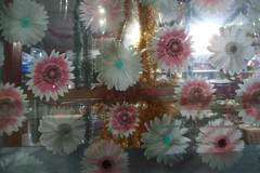 (lenelenka) Tags: kyiv kiev ukraine abstract flower surreal distagon sal24f20z