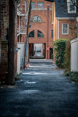 Alexandria Alleyway (John Brighenti) Tags: outdoors outside urban street photography alexandria virginia va oldtown brick sidwalk evening goldnenhour city downtown buildings walls roads businesses signs alley alleyway backroad asphalt pole pothole puddle lonely bush shrub sony alpha a7rii ilce7rn2 sel70200g nex emount femount ilce zoom gmaster