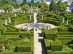 Jardim do Paço Episcopal, Castelo Branco 05 (Sofia Barão) Tags: portugal beira baixa jardim garden