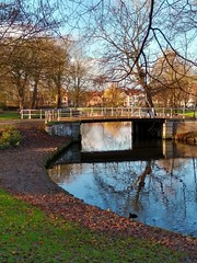 Divine Haarlem